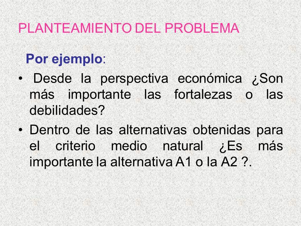 PLANTEAMIENTO DEL PROBLEMA Por ejemplo: Desde la perspectiva económica ¿Son más importante las fortalezas o las debilidades? Dentro de las alternativa
