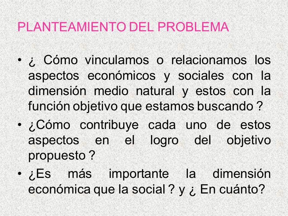 PLANTEAMIENTO DEL PROBLEMA ¿ Cómo vinculamos o relacionamos los aspectos económicos y sociales con la dimensión medio natural y estos con la función o