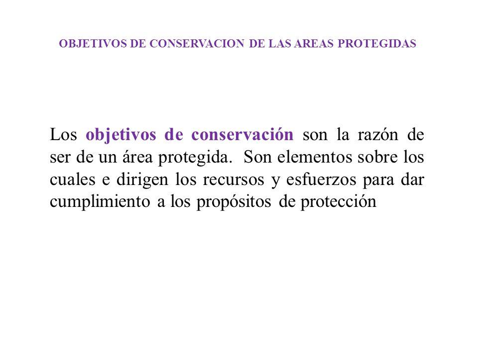 OBJETIVOS DE CONSERVACION DE LAS AREAS PROTEGIDAS Los objetivos de conservación son la razón de ser de un área protegida. Son elementos sobre los cual