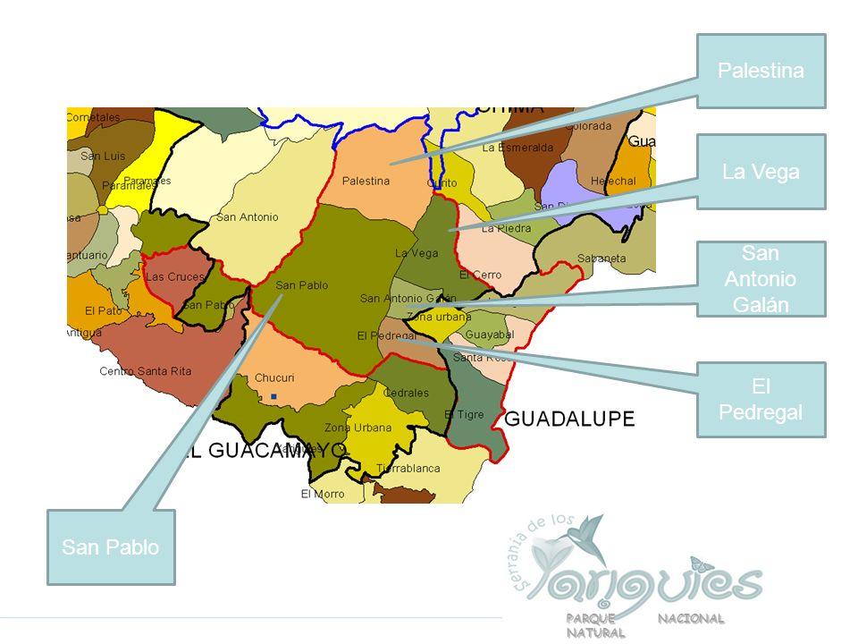Palestina La Vega San Antonio Galán El Pedregal San Pablo PARQUE NACIONAL NATURAL