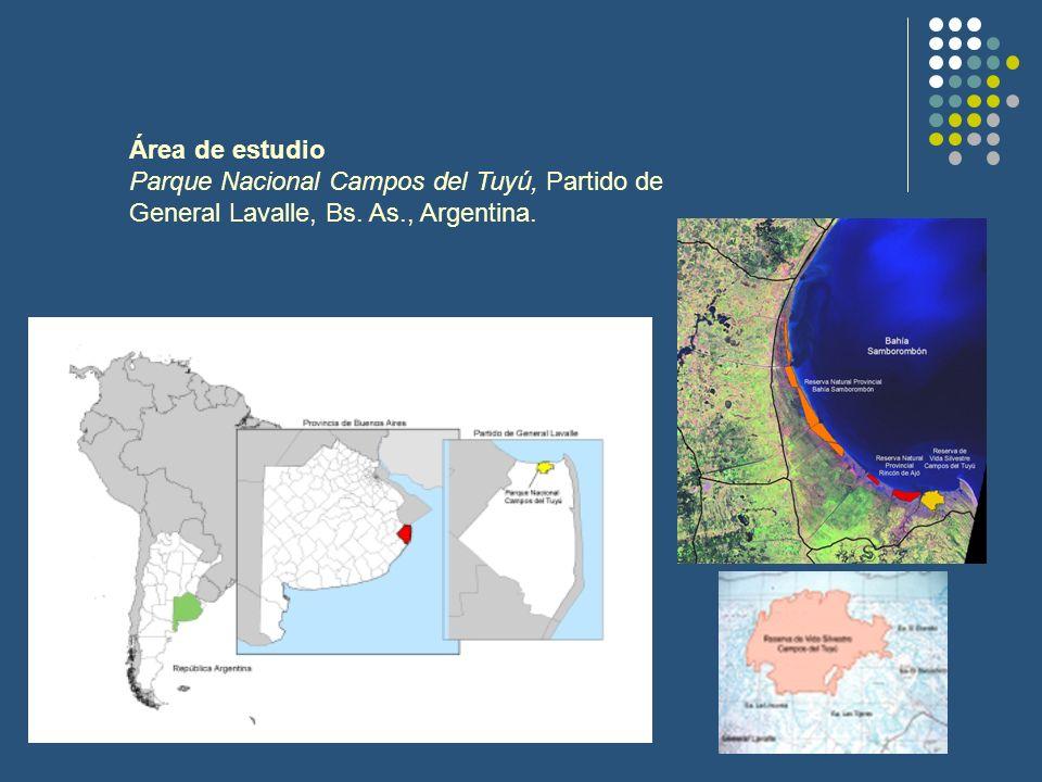 Área de estudio Parque Nacional Campos del Tuyú, Partido de General Lavalle, Bs. As., Argentina.