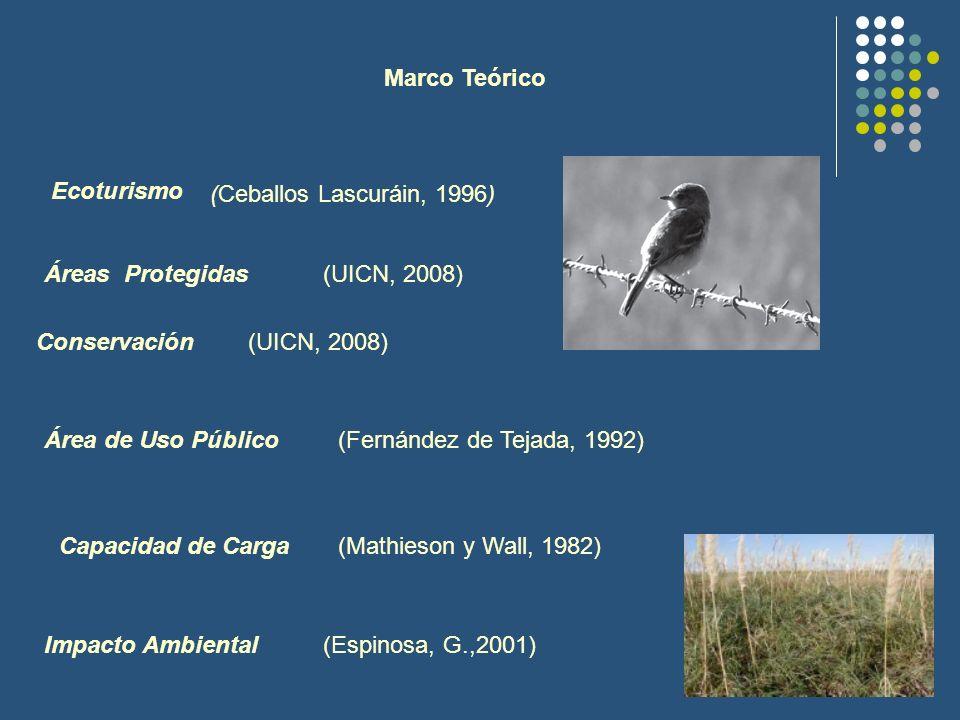 Marco Teórico Ecoturismo (Ceballos Lascuráin, 1996) Áreas Protegidas(UICN, 2008) Conservación(UICN, 2008) Área de Uso Público(Fernández de Tejada, 199
