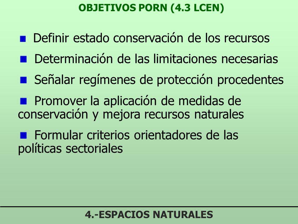 PLANIFICACIÓN DE LOS RECURSOS NATURALES 4.-ESPACIOS NATURALES Directrices para la ordenación de los recursos naturales (DORN) (8 LCEN) Vinculan a PORN