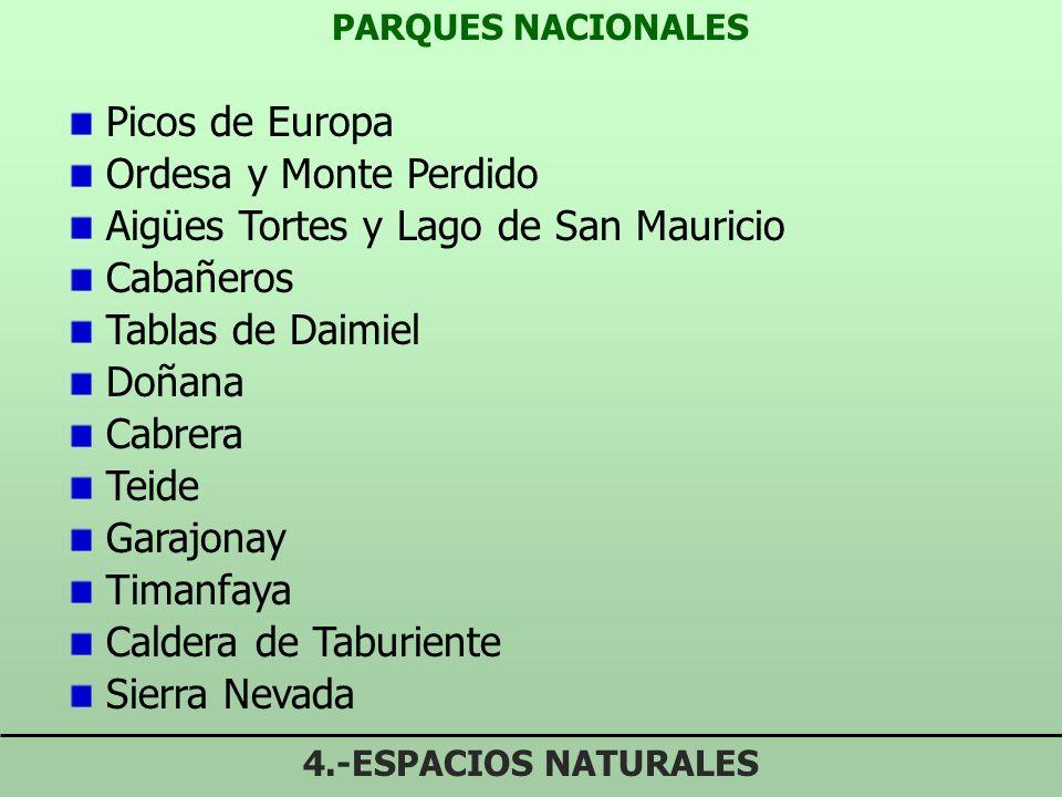RÉGIMEN JURÍDICO PORN (5 LCEN) 4.-ESPACIOS NATURALES Obligatorios y ejecutivos en el ámbito de espacios naturales Prevalencia de los PORN sobre otros