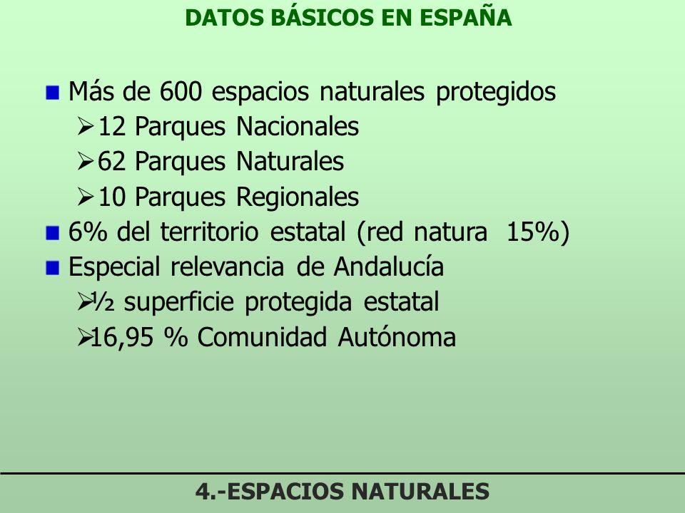 DATOS BÁSICOS EN ESPAÑA 4.-ESPACIOS NATURALES Más de 600 espacios naturales protegidos 12 Parques Nacionales 62 Parques Naturales 10 Parques Regionales 6% del territorio estatal (red natura 15%) Especial relevancia de Andalucía ½ superficie protegida estatal 16,95 % Comunidad Autónoma