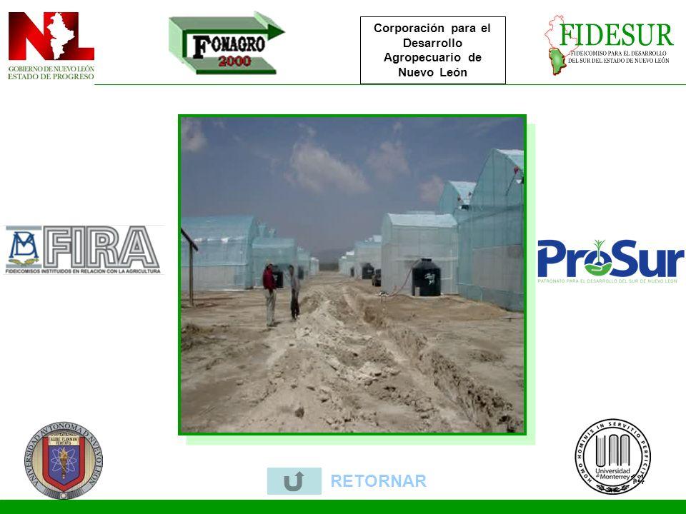 14 RETORNAR Corporación para el Desarrollo Agropecuario de Nuevo León