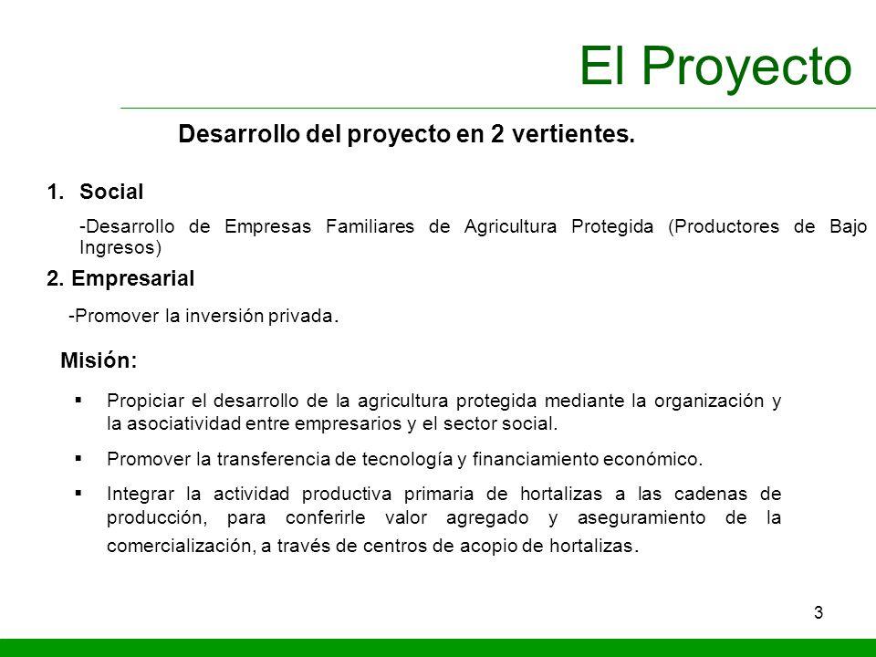 3 El Proyecto 1.Social -Desarrollo de Empresas Familiares de Agricultura Protegida (Productores de Bajo Ingresos) 2. Empresarial -Promover la inversió
