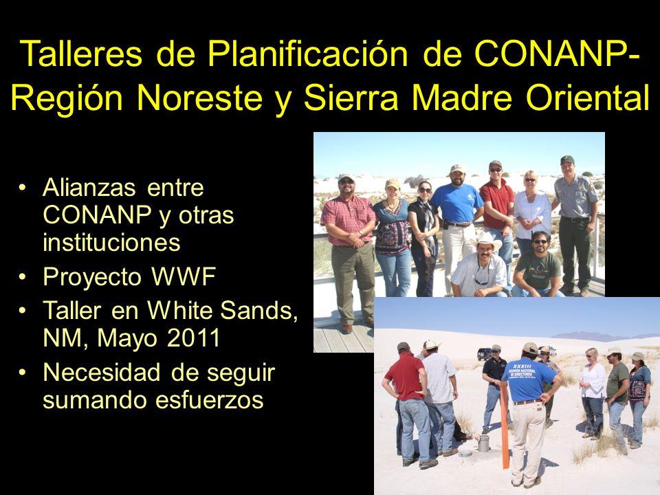 Talleres de Planificación de CONANP- Región Noreste y Sierra Madre Oriental Alianzas entre CONANP y otras instituciones Proyecto WWF Taller en White S