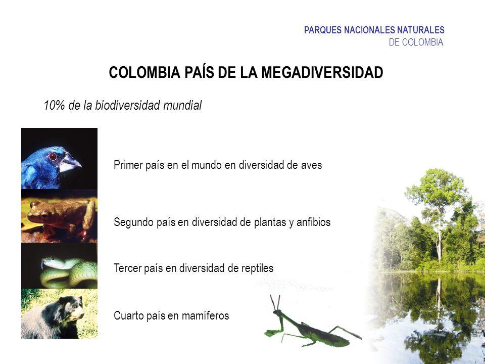 COLOMBIA PAÍS DE LA MEGADIVERSIDAD Primer país en el mundo en diversidad de aves Segundo país en diversidad de plantas y anfibios 10% de la biodiversi