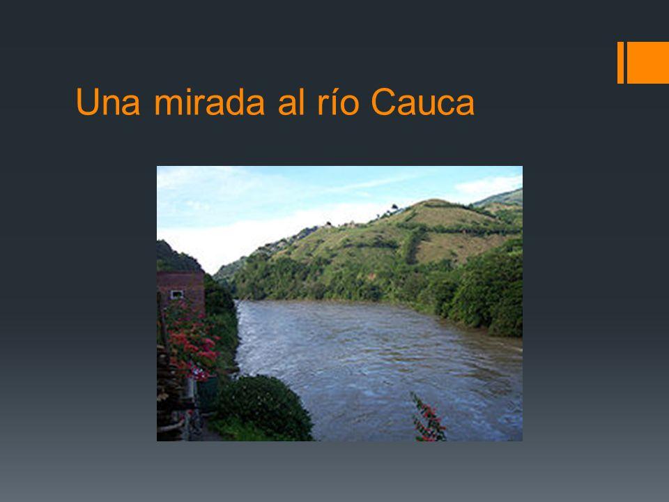 Una mirada al río Cauca