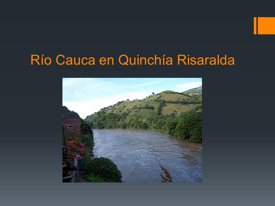 Río Cauca en Quinchía Risaralda
