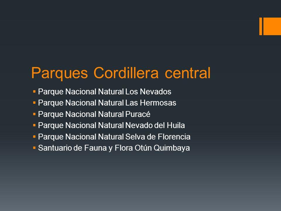 Parques Cordillera central Parque Nacional Natural Los Nevados Parque Nacional Natural Las Hermosas Parque Nacional Natural Puracé Parque Nacional Natural Nevado del Huila Parque Nacional Natural Selva de Florencia Santuario de Fauna y Flora Otún Quimbaya