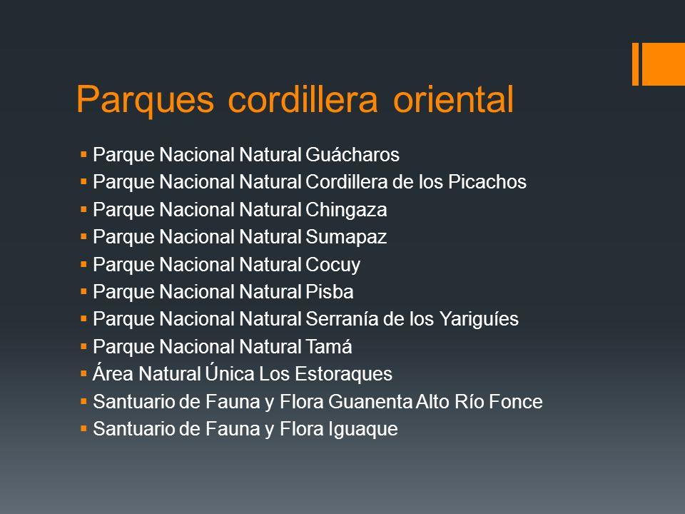 Parques cordillera oriental Parque Nacional Natural Guácharos Parque Nacional Natural Cordillera de los Picachos Parque Nacional Natural Chingaza Parq