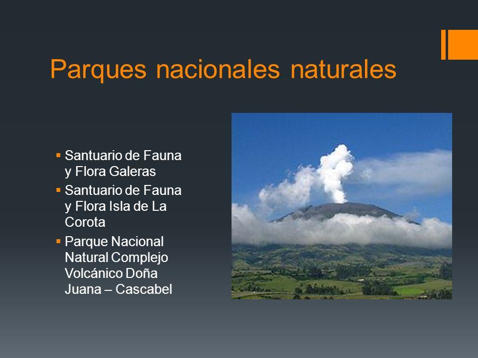 Parques nacionales naturales Santuario de Fauna y Flora Galeras Santuario de Fauna y Flora Isla de La Corota Parque Nacional Natural Complejo Volcánic