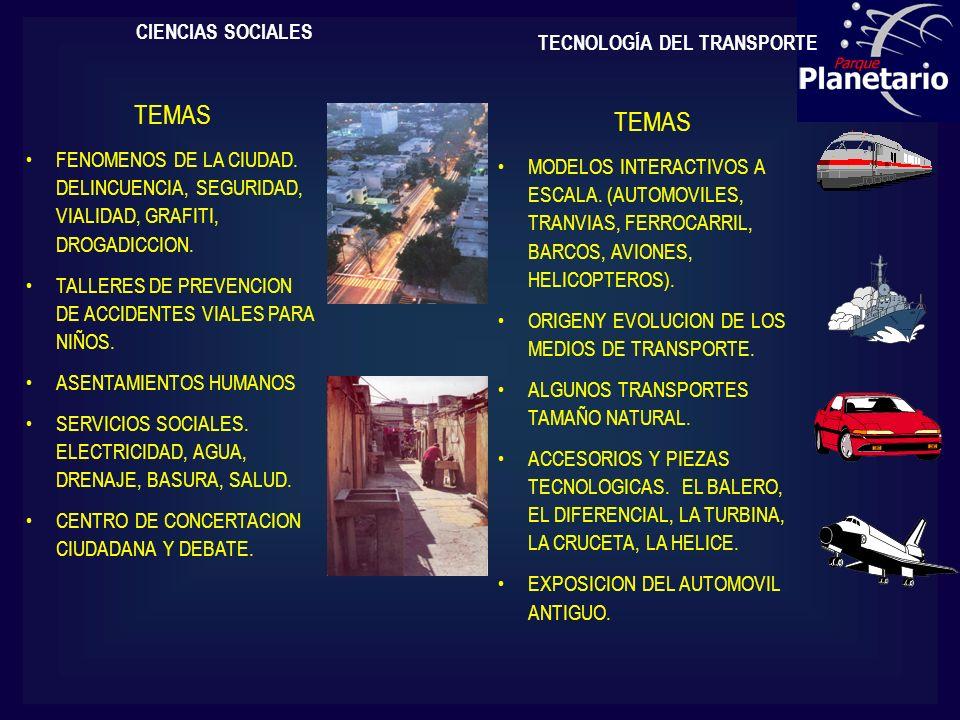 CIENCIAS SOCIALES TEMAS FENOMENOS DE LA CIUDAD. DELINCUENCIA, SEGURIDAD, VIALIDAD, GRAFITI, DROGADICCION. TALLERES DE PREVENCION DE ACCIDENTES VIALES