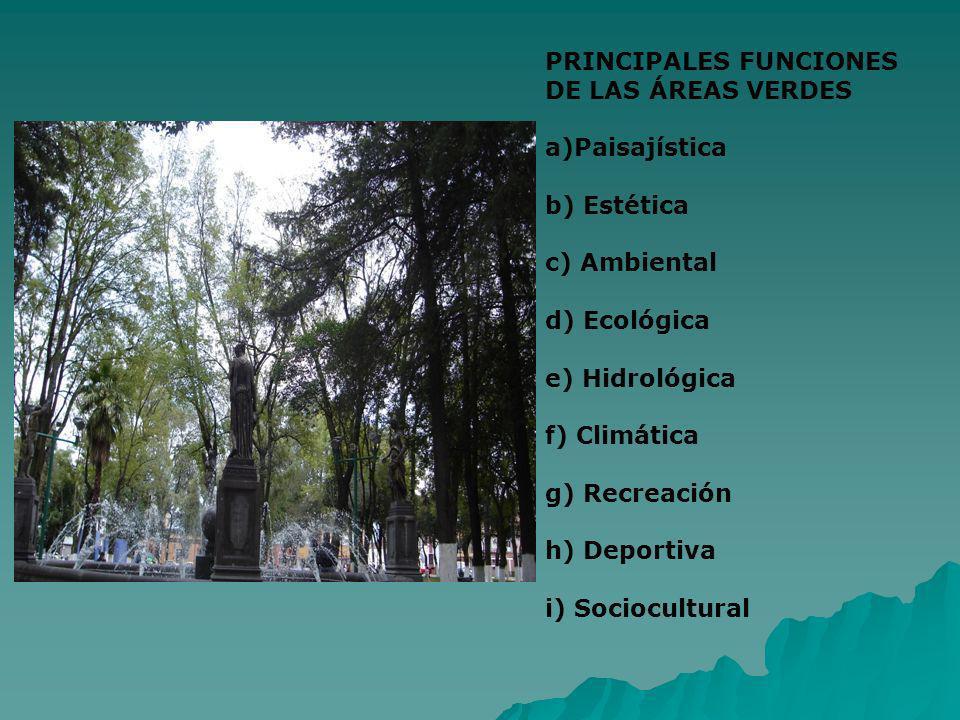 PRINCIPALES FUNCIONES DE LAS ÁREAS VERDES a)Paisajística b) Estética c) Ambiental d) Ecológica e) Hidrológica f) Climática g) Recreación h) Deportiva
