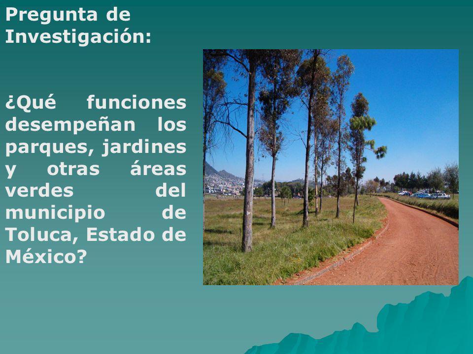 Objetivo Reivindicar la importancia de la multifuncionalidad de los parques urbanos, los jardines y otras áreas verdes para el bienestar de la ciudadanía