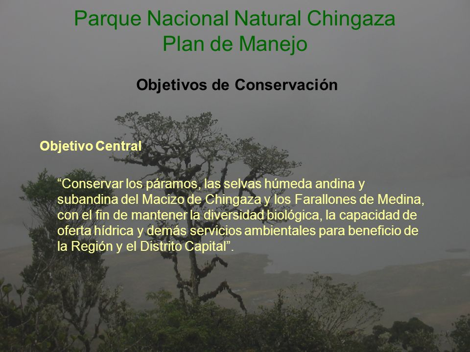 BIODIVERSIDAD - Conservar muestras de páramo, selva húmeda andina y subandina en estado natural, para mantener la conectividad ecosistémica de la región.