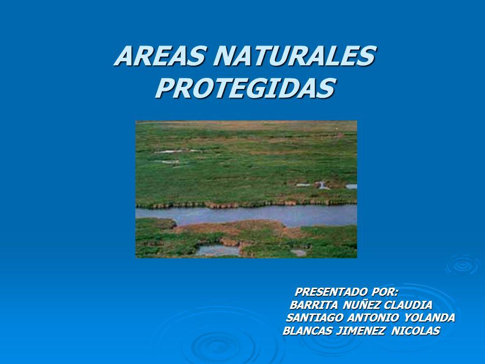 AREAS NATURALES PROTEGIDAS PRESENTADO POR: BARRITA NUÑEZ CLAUDIA BARRITA NUÑEZ CLAUDIA SANTIAGO ANTONIO YOLANDA SANTIAGO ANTONIO YOLANDA BLANCAS JIMEN