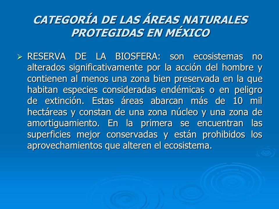 CATEGORÍA DE LAS ÁREAS NATURALES PROTEGIDAS EN MÉXICO RESERVA DE LA BIOSFERA: son ecosistemas no alterados significativamente por la acción del hombre