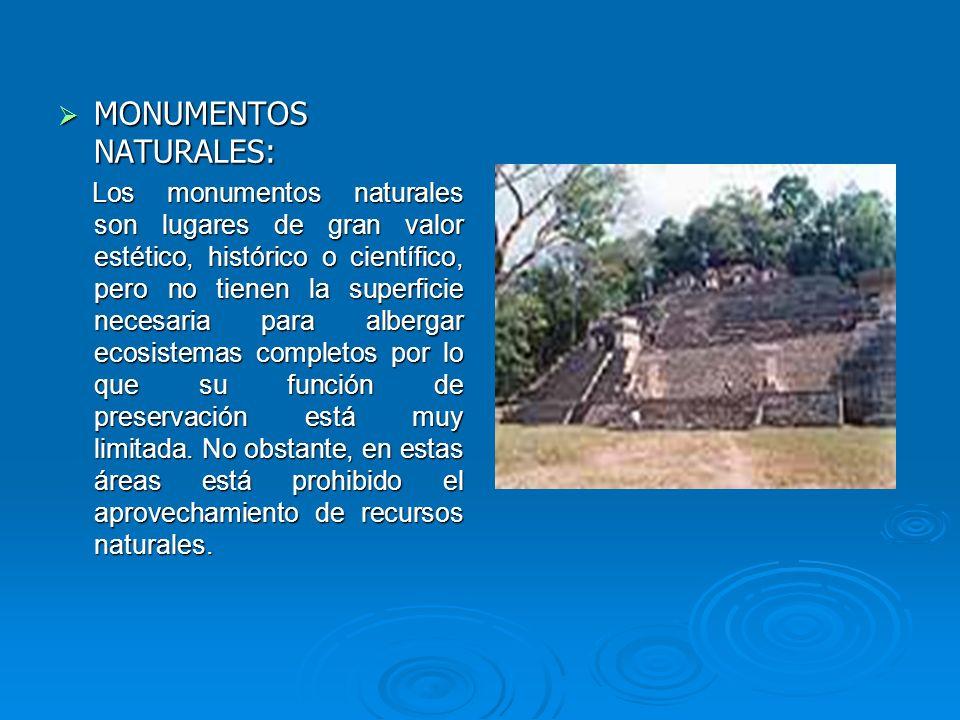 MONUMENTOS NATURALES: MONUMENTOS NATURALES: Los monumentos naturales son lugares de gran valor estético, histórico o científico, pero no tienen la sup