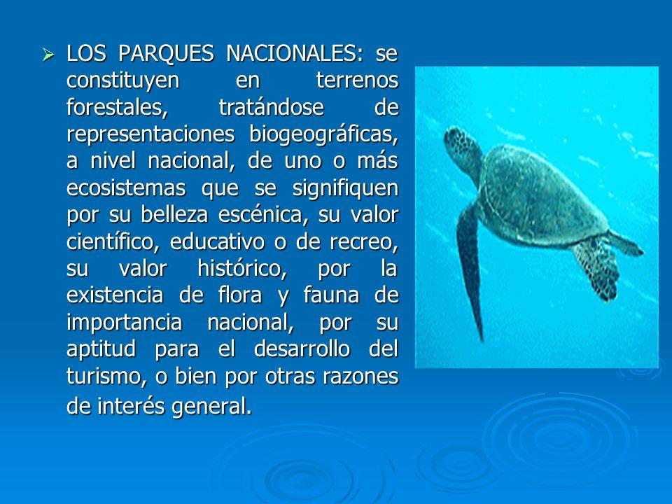 LOS PARQUES NACIONALES: se constituyen en terrenos forestales, tratándose de representaciones biogeográficas, a nivel nacional, de uno o más ecosistem