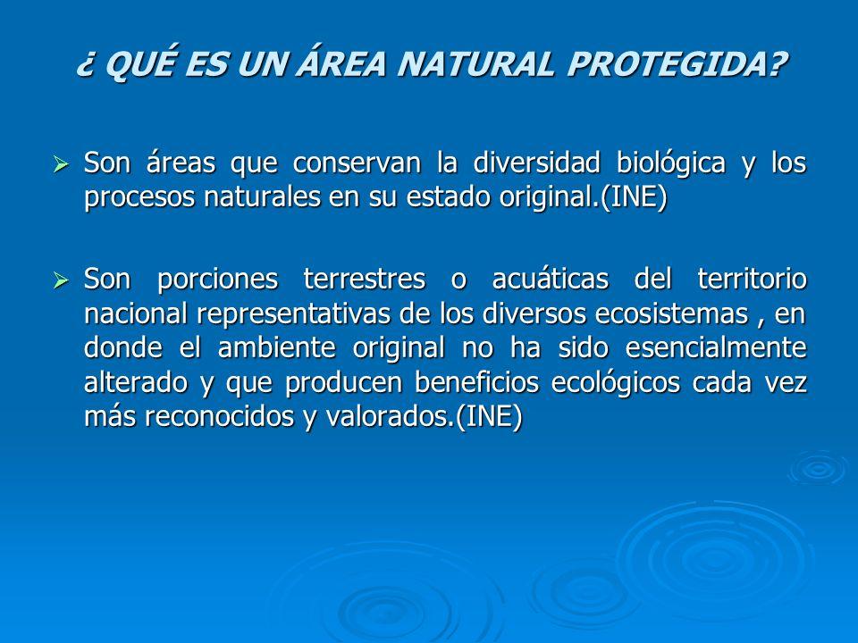 ¿ QUÉ ES UN ÁREA NATURAL PROTEGIDA? Son áreas que conservan la diversidad biológica y los procesos naturales en su estado original.(INE) Son áreas que