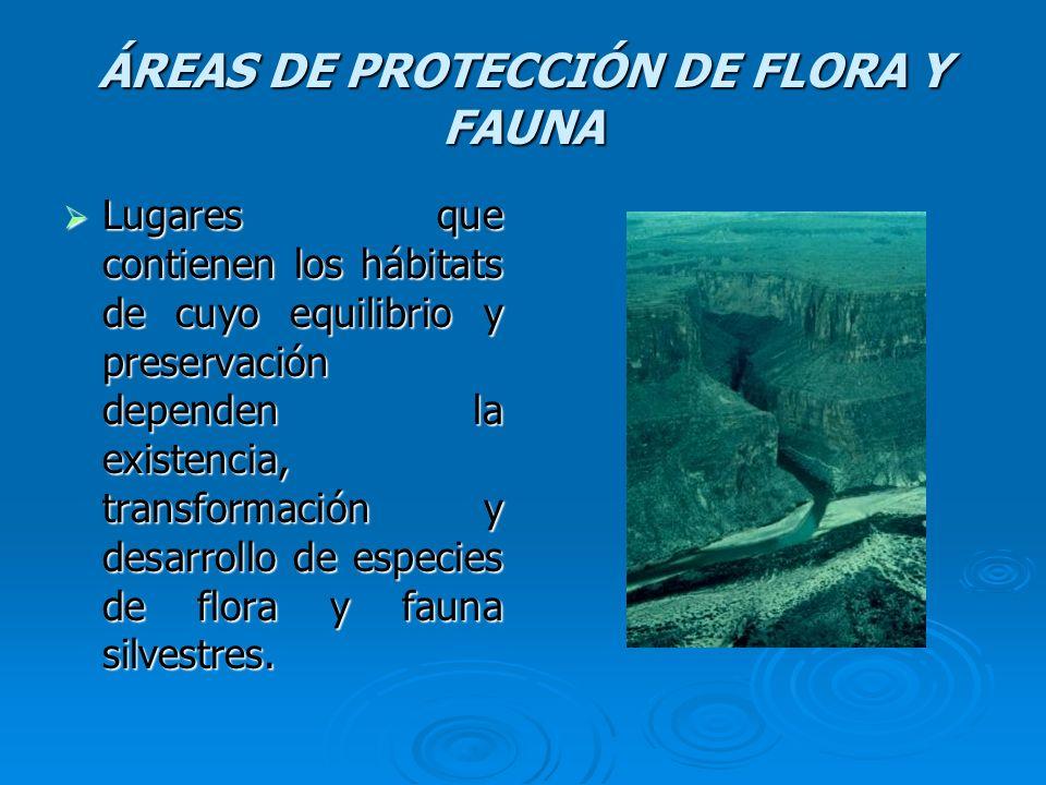 ÁREAS DE PROTECCIÓN DE FLORA Y FAUNA Lugares que contienen los hábitats de cuyo equilibrio y preservación dependen la existencia, transformación y des