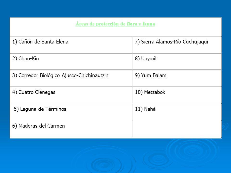 Áreas de protección de flora y fauna 1) Cañón de Santa Elena7) Sierra Alamos-Río Cuchujaqui 2) Chan-Kin8) Uaymil 3) Corredor Biológico Ajusco-Chichina