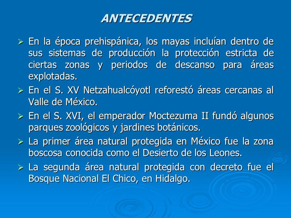 ANTECEDENTES En la época prehispánica, los mayas incluían dentro de sus sistemas de producción la protección estricta de ciertas zonas y periodos de d