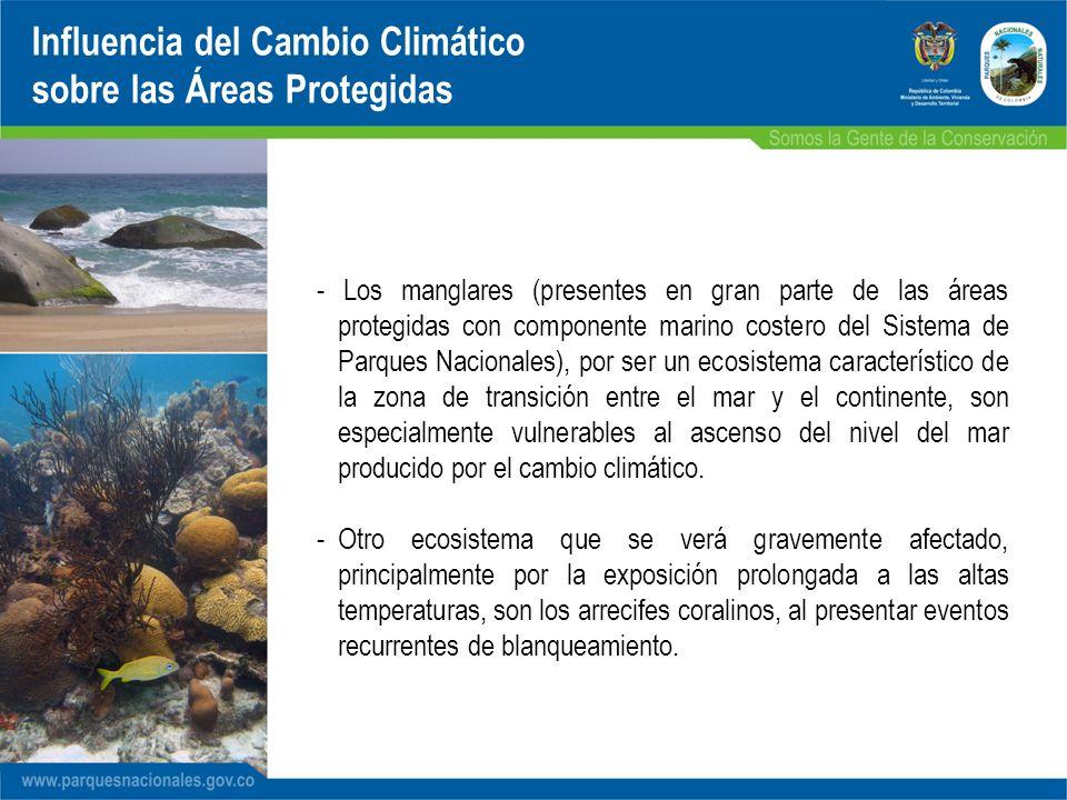 - Los manglares (presentes en gran parte de las áreas protegidas con componente marino costero del Sistema de Parques Nacionales), por ser un ecosiste