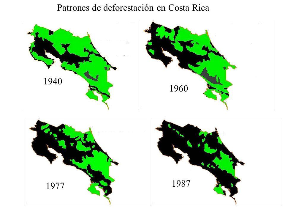 1940 1960 1977 1987 Patrones de deforestación en Costa Rica
