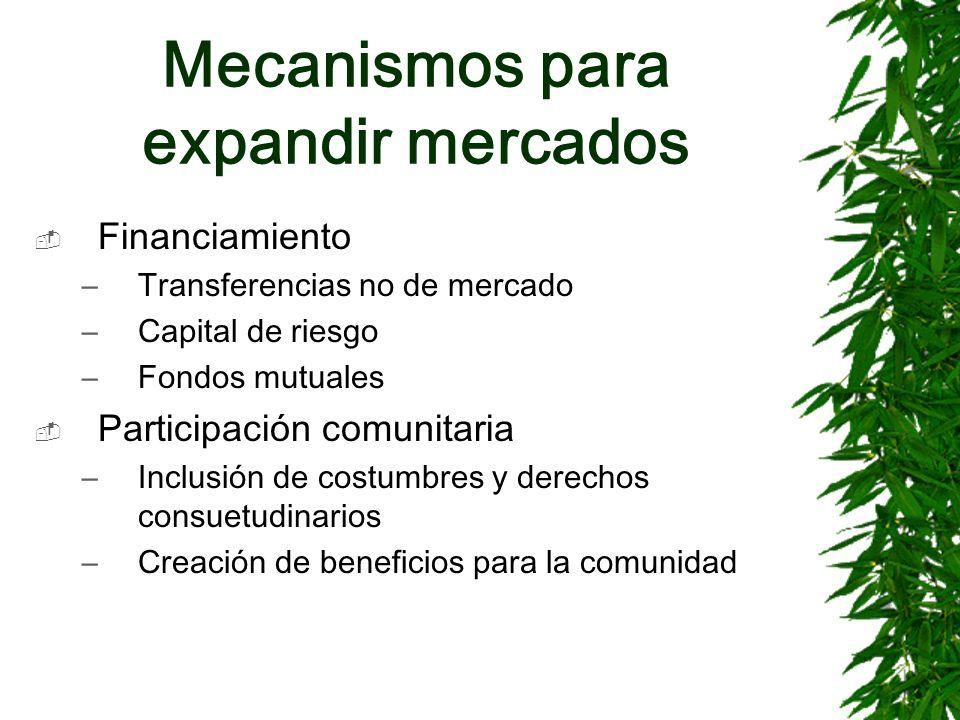 Mecanismos para expandir mercados Financiamiento –Transferencias no de mercado –Capital de riesgo –Fondos mutuales Participación comunitaria –Inclusió