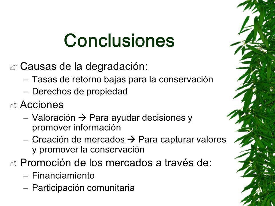 Conclusiones Causas de la degradación: –Tasas de retorno bajas para la conservación –Derechos de propiedad Acciones –Valoración Para ayudar decisiones