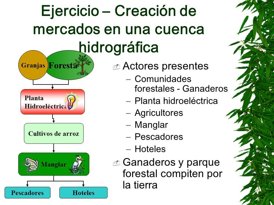 Ejercicio – Creación de mercados en una cuenca hidrográfica Actores presentes –Comunidades forestales - Ganaderos –Planta hidroeléctrica –Agricultores
