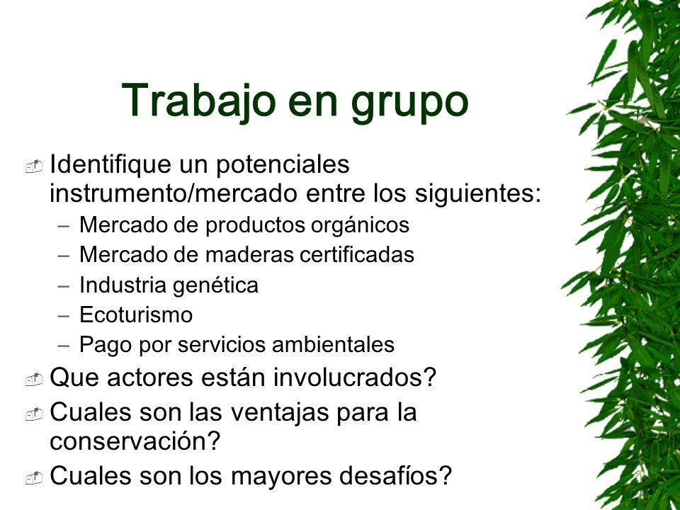 Trabajo en grupo Identifique un potenciales instrumento/mercado entre los siguientes: –Mercado de productos orgánicos –Mercado de maderas certificadas