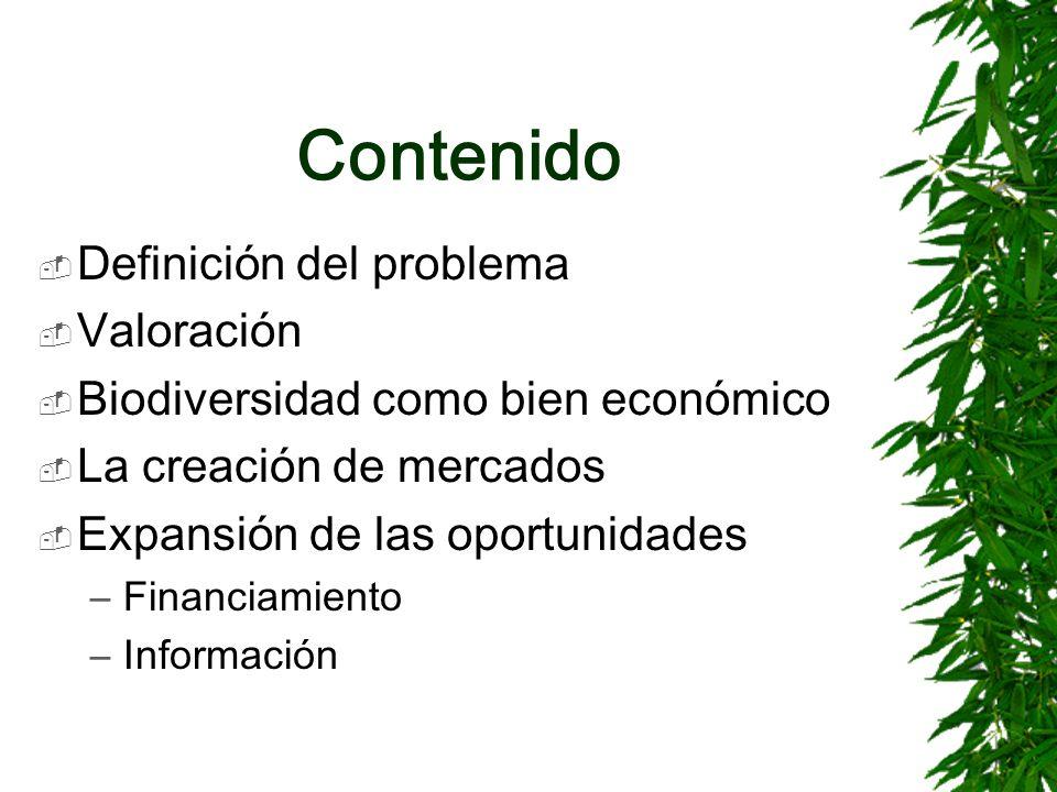 Contenido Definición del problema Valoración Biodiversidad como bien económico La creación de mercados Expansión de las oportunidades –Financiamiento