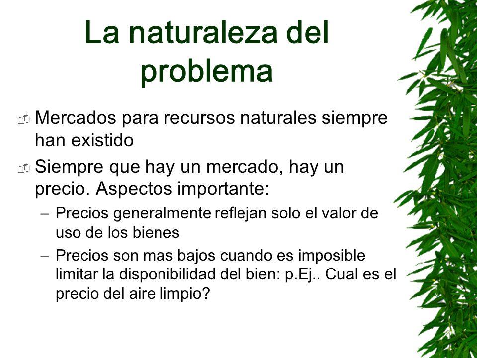 La naturaleza del problema Mercados para recursos naturales siempre han existido Siempre que hay un mercado, hay un precio. Aspectos importante: –Prec