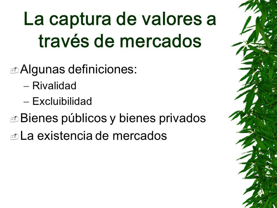 La captura de valores a través de mercados Algunas definiciones: –Rivalidad –Excluibilidad Bienes públicos y bienes privados La existencia de mercados