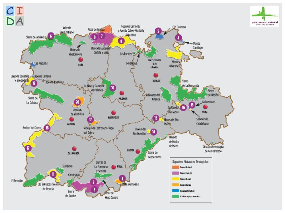 DOCUMENTACIÓN BASE: Proyecto de creación de una red de información y documentación entre centros de documentación de espacios naturales protegidos de España y Europa.