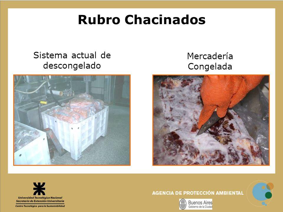 Sistema actual de descongelado Mercadería Congelada Rubro Chacinados