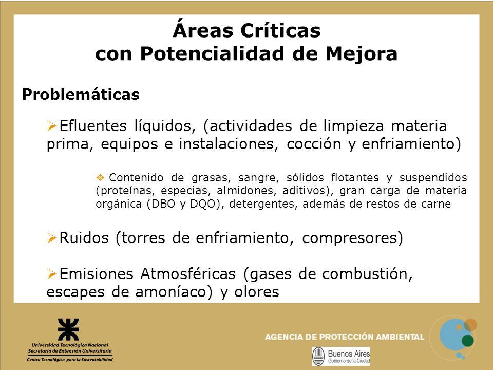 Áreas Críticas con Potencialidad de Mejora Problemáticas Efluentes líquidos, (actividades de limpieza materia prima, equipos e instalaciones, cocción