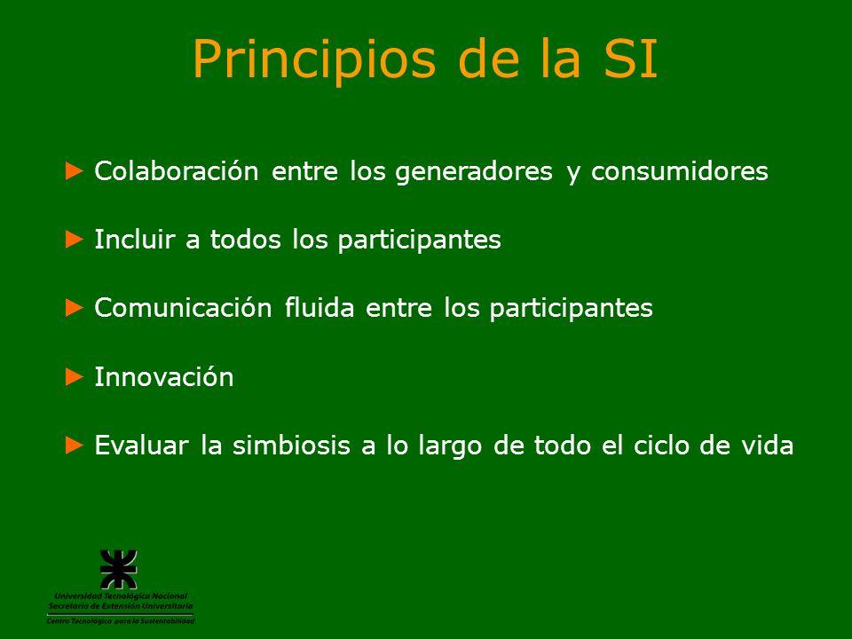 Principios de la SI Colaboración entre los generadores y consumidores Incluir a todos los participantes Comunicación fluida entre los participantes In