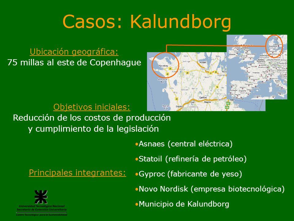 Casos: Kalundborg Principales integrantes: Asnaes (central eléctrica) Statoil (refinería de petróleo) Gyproc (fabricante de yeso) Novo Nordisk (empres