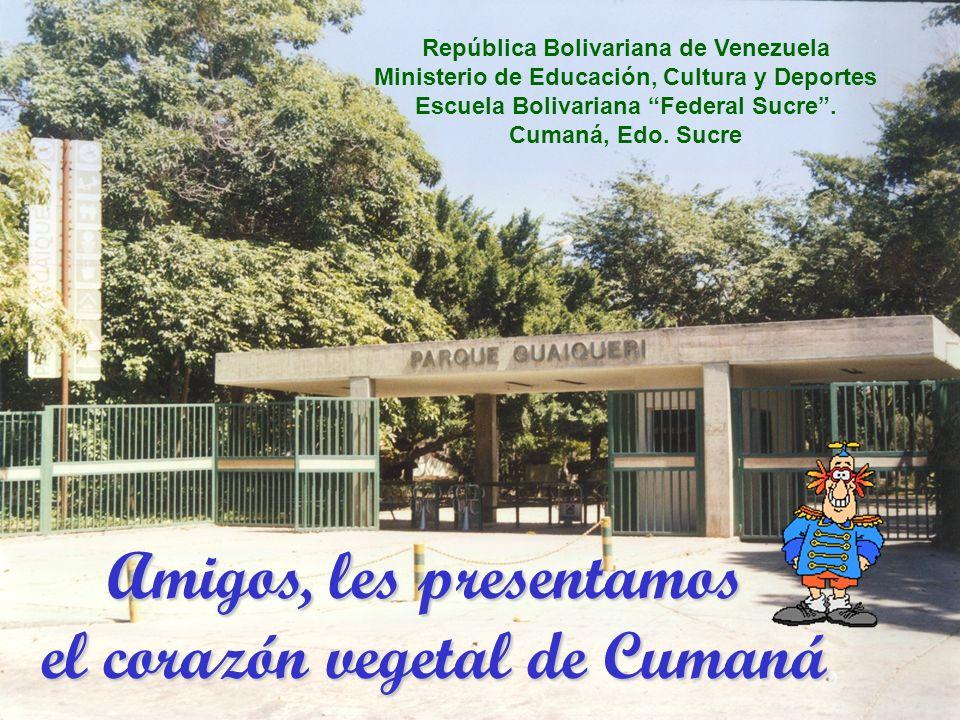 República Bolivariana de Venezuela Ministerio de Educación, Cultura y Deportes Escuela Bolivariana Federal Sucre.