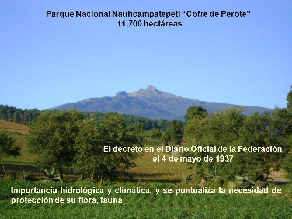 Parque Nacional Nauhcampatepetl Cofre de Perote: 11,700 hectáreas El decreto en el Diario Oficial de la Federación el 4 de mayo de 1937 Importancia hi