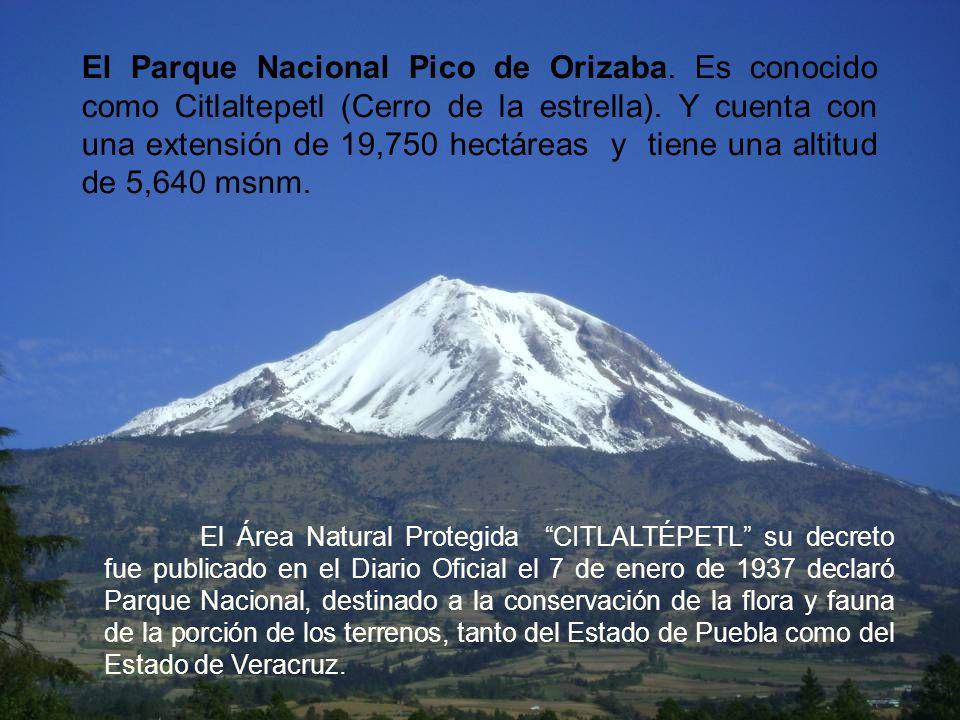 El Parque Nacional Pico de Orizaba. Es conocido como Citlaltepetl (Cerro de la estrella). Y cuenta con una extensión de 19,750 hectáreas y tiene una a