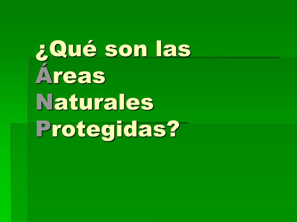 ¿Qué son las Áreas Naturales Protegidas?