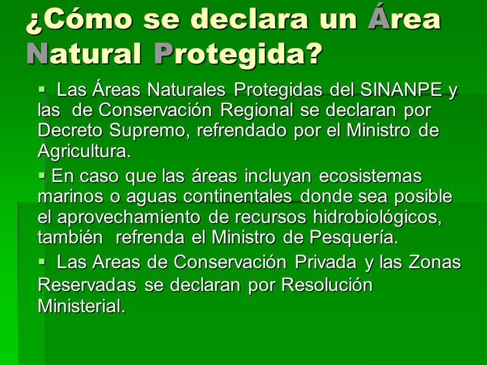 ¿Cómo se declara un Área Natural Protegida? Las Áreas Naturales Protegidas del SINANPE y las de Conservación Regional se declaran por Decreto Supremo,