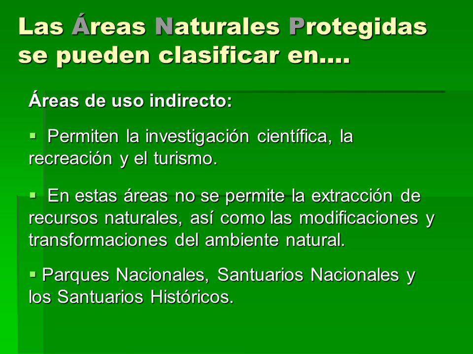 Las Áreas Naturales Protegidas se pueden clasificar en.... Áreas de uso indirecto: Permiten la investigación científica, la recreación y el turismo. P